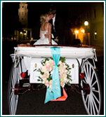 Charleston Coach is a luxury mobile wedding carriage service.